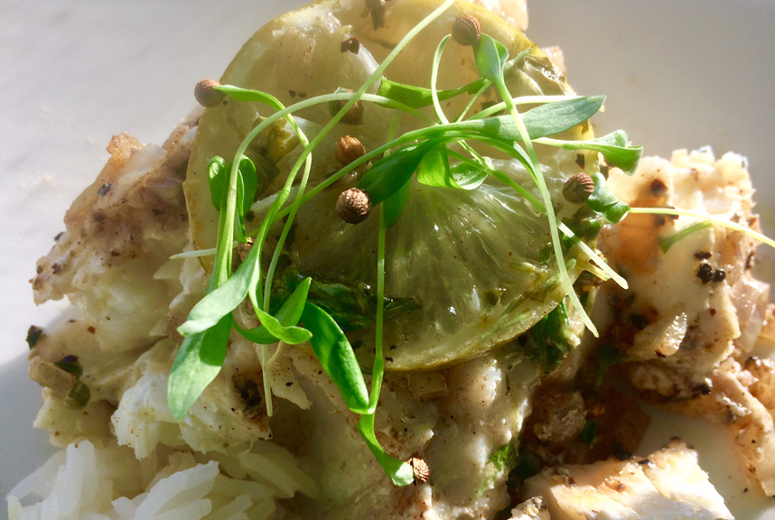 Crusted Grouper with Lemon and Cilantro Microgreens - Delicate yet potent, cilantro microgreens with coriander seed caps are the perfect complement to any fish or chicken entrees.