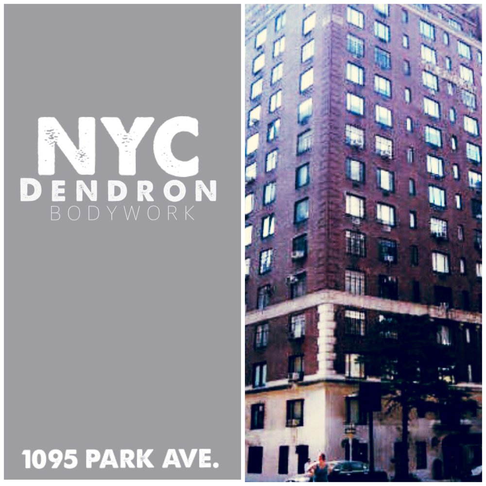 DENDRON IS PROUD TO ANNOUNCE THAT WE ARE NOW OFFERING FITNESS SERVICES TO THIS BEAUTIFULLY HISTORIC MANHATTAN LOCATION. OUR TEAM WILL PROVIDE THE HIGHEST LEVEL OF PERSONAL TRAINING SERVICES TO THE RESIDENTS AT 1095 PARK AVE. IN THEIR NEWLY RENOVATED STATE OF THE ART FITNESS CENTER LOCATED IN THE LOWER LEVEL OF THE BUILDING.