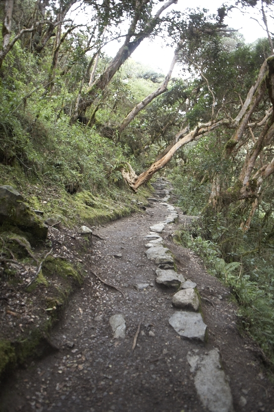 Day 2, Inca Trail