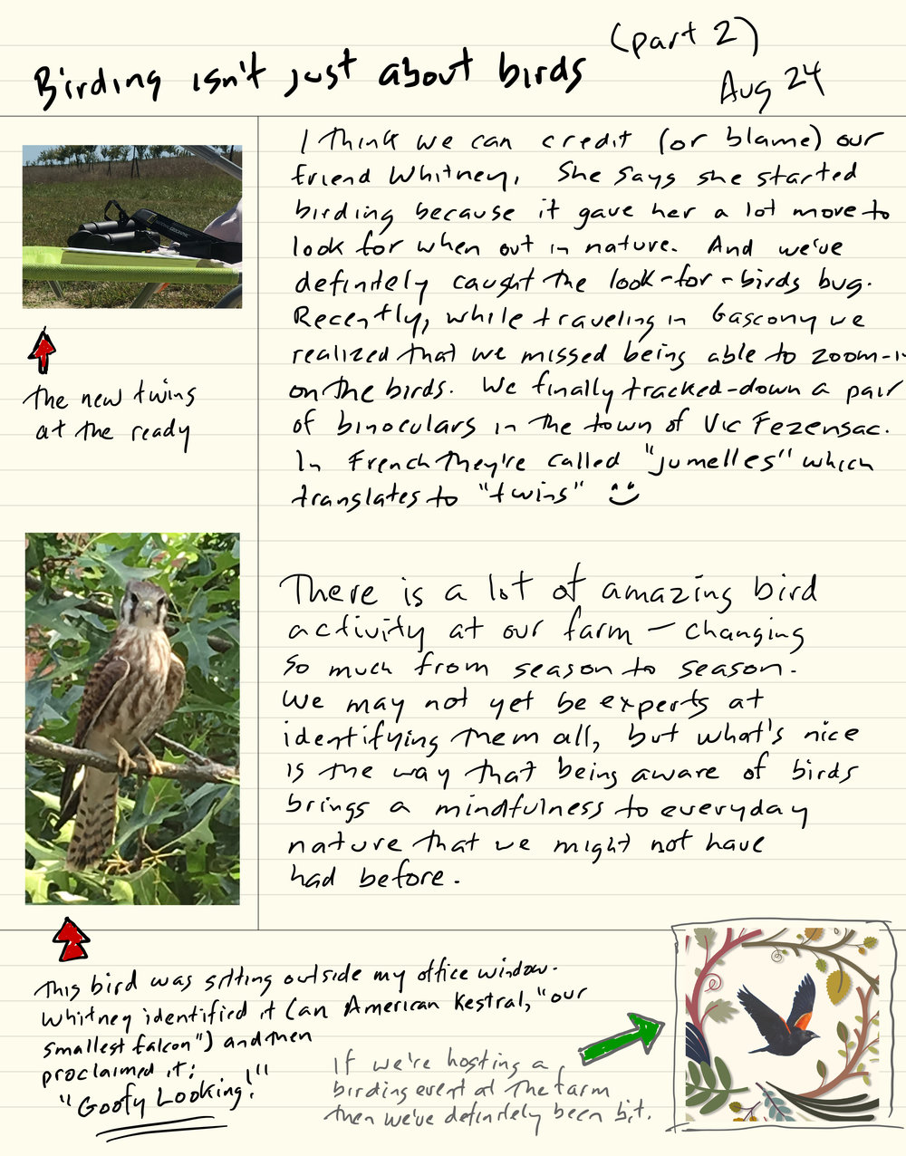 birding_2.jpg