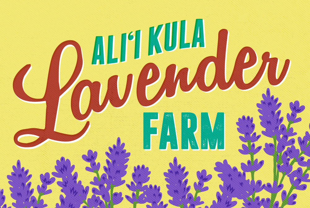lavender farm v2.jpg