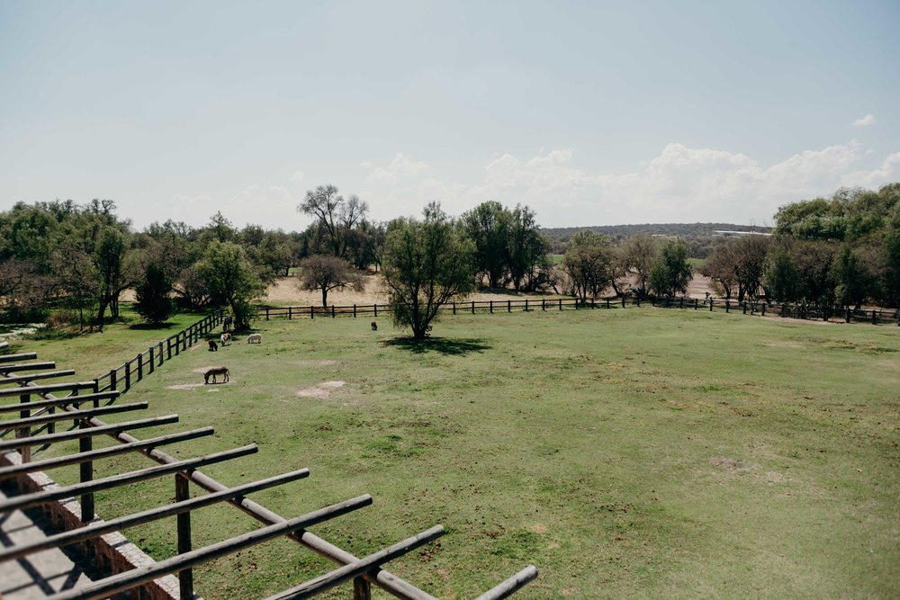 Esme & Angel | PW Hacienda Sepulveda 132.jpg
