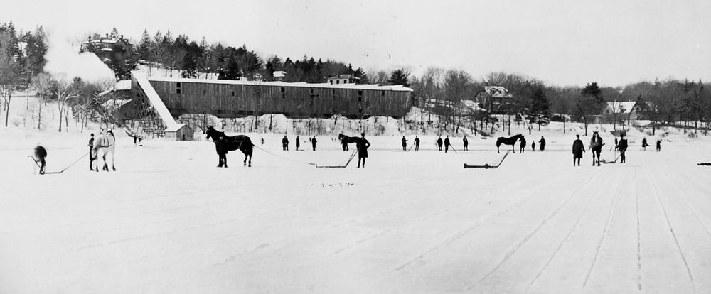 Men at Jamaica Pond stand with horse-drawn sleds used to move the ice to the icehouses. Photograph courtesy of the Boston Public Library.