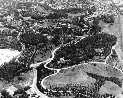 An aerial view of Bussey Woods in early days of the Arnold Arboretum.Used with permission from the American Environmental Photographs Collection, [AEP Image Number, e.g., AEP-MIN73], Department of Special Collections, University of Chicago Library.