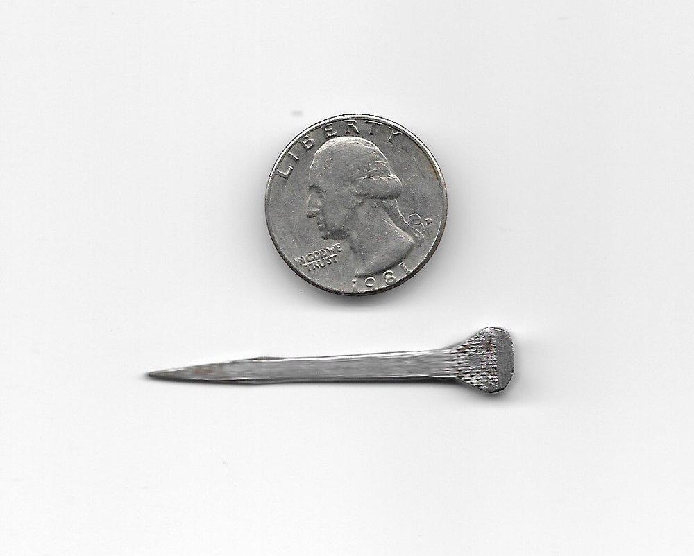 Horseshoe nail, courtesy of John Lovett