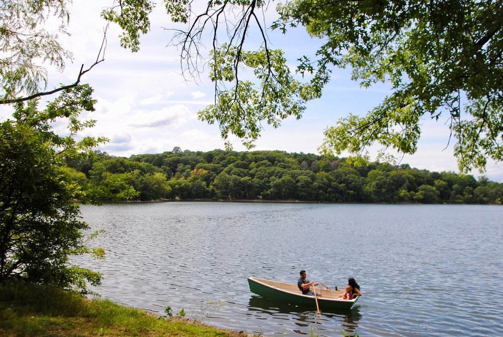 Hellenic Hill from Jamaica Pond. July 29, 2018. Photograph courtesy of Richard Heath.