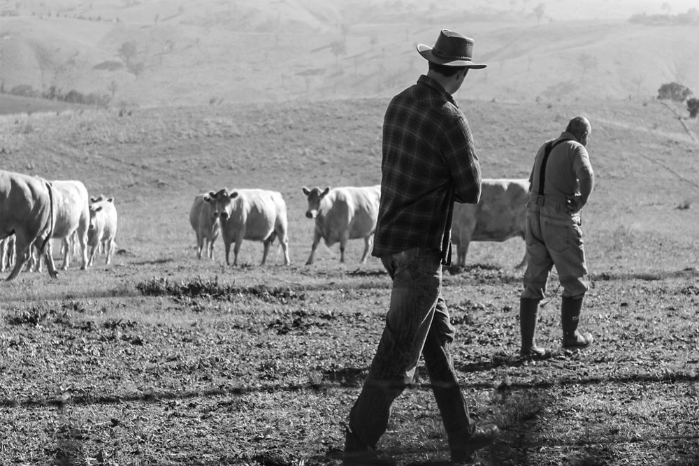 farmers-2343262_1280.jpg