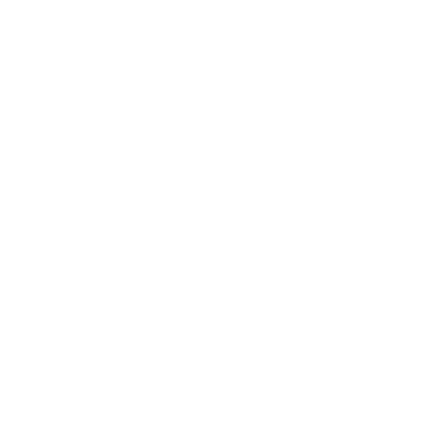 International Business Organization