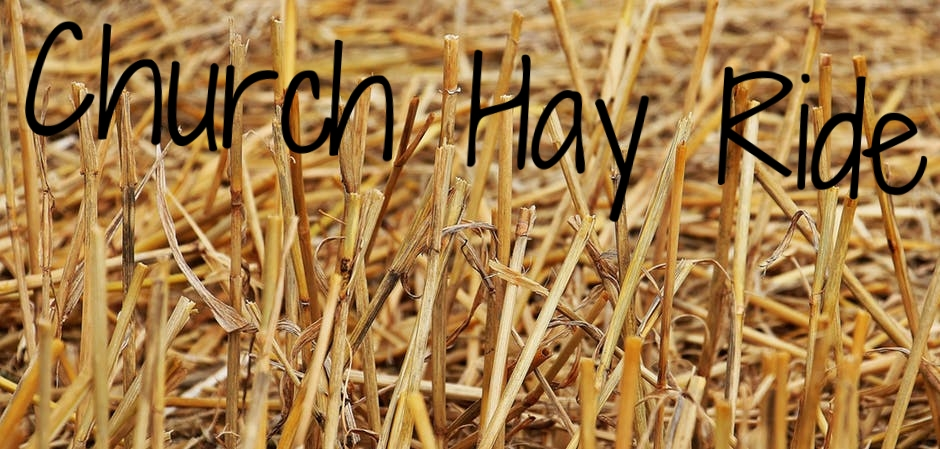 stubble-harvest-straw-agriculture-158198.jpg
