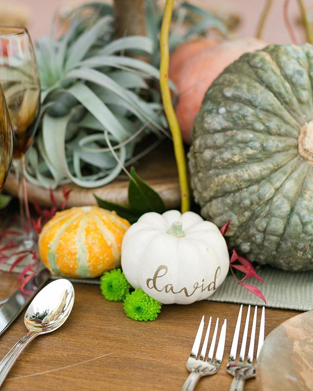 Have an October wedding? Take your place cards up a notch and use mini pumpkins! Thanks @alyssajglaser for the pretty handwriting 😘 ___ Vendor love-⠀ Planning & Design: @confettiskies ⠀ Organization: @wipasocal ⠀ Photography: @kayshaweiner ⠀ ⠀ Paper Goods: @honeycrispdesigns ⠀ Floral Design: @beautifulsavageflowers ⠀ Linens: @wildflowerlinen ⠀ Rentals: @brighteventrentals ⠀⠀ Venue & Catering: @pelicanhillweddings ⠀ Tablescape Representation: @hotelirvine .⠀ .⠀ .⠀ .⠀ #confettiskies #wipasocal #pelicanhillresort #pelicanhill #hotelirvine #pumpkinplacecards