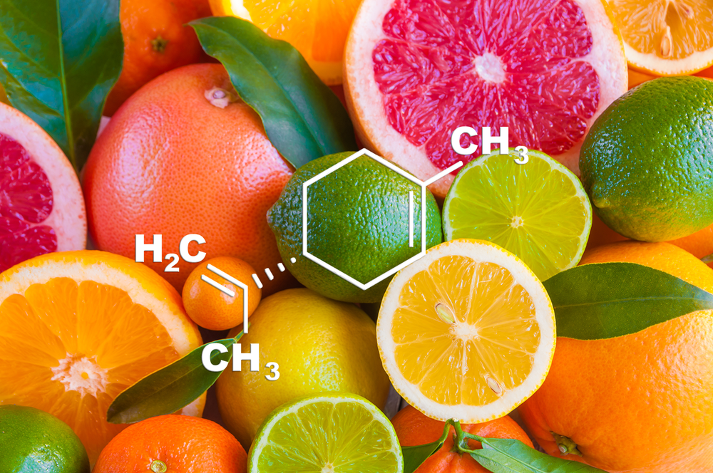 Limonene - Potential Medical Benefits:  Anti-anxiety, Anti-depression, Pain relief, Anti-inflammation, Anti-cancerFlavor Profile : CitrusThis is the terpene that smells like citrus. Scientific studies show this terpene may decrease anxiety, depression, pain, inflammation, and cancer, in animals and in some published studies in humans. Lima et al.,2013 | Piccinelli et al., 2015 | do Amaral et al., 2007 | Chaudhary et al, 2012 | d'Alessio et al., 2013