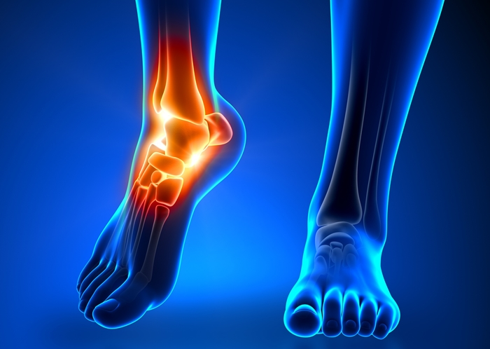 foot picture skeleton.jpg