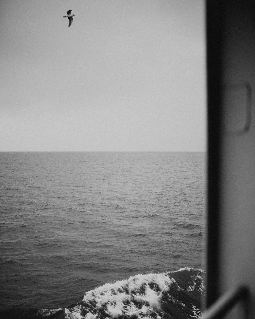 Portfolio Pic-341.jpg