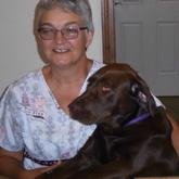 Cindy - Cindy has worked at the Presque Isle Animal Hospital since 1990.  She and her family live in PI with two dogs and two horses.  Cindy is interested in dog behavior and training.  Away from work she enjoys working in her garden and orchard and participating in Wag It Games with her chocolate lab,