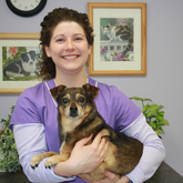 Jess - Jessica is a Licensed Veterinary Technician, having been graduated from the University College of Bangor in 2002.  She has worked at the Presque Isle Animal Hospital since 2009.  She lives in Washburn with her family, dogs