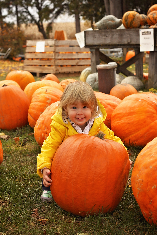 fall-family-photos-kitchener-waterloo-2.jpg