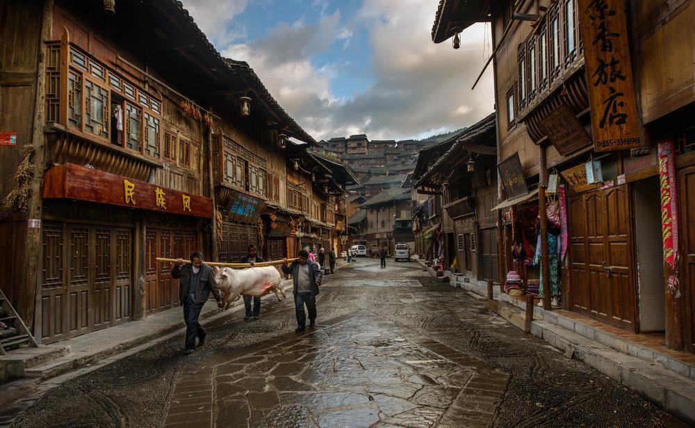 Guizhou - China