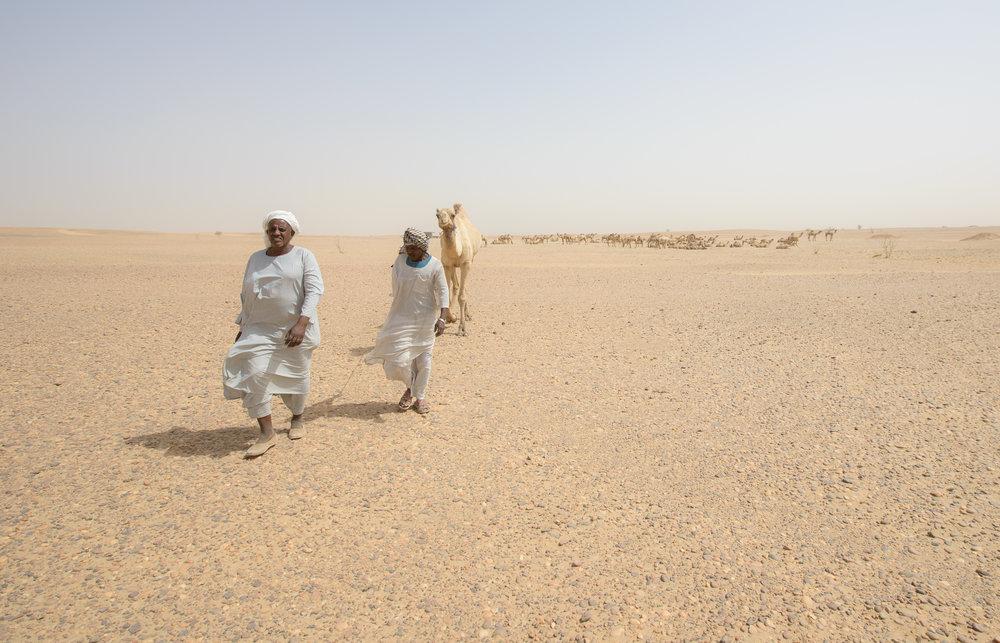 Sahara desert - Sudan