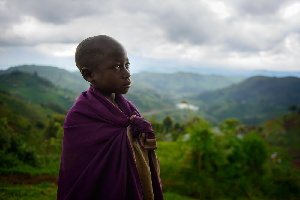 Virungas - Uganda