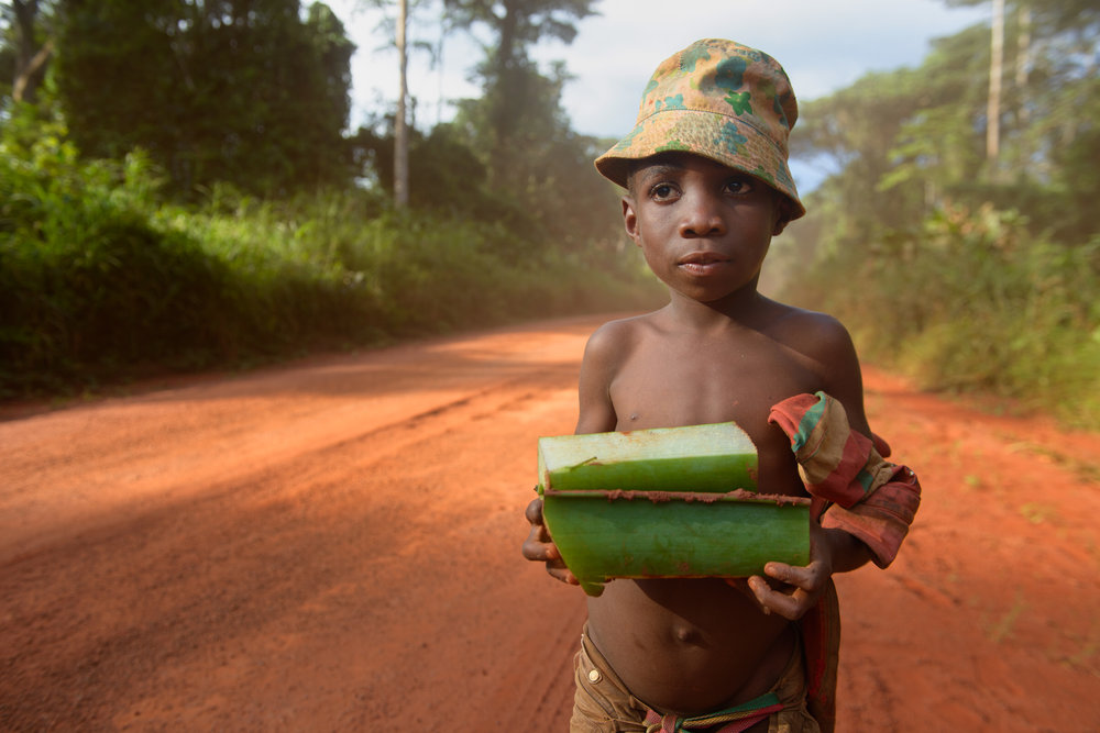 Sangha - Congo