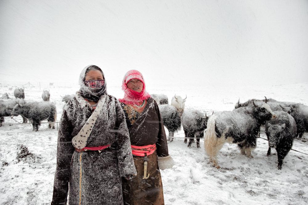 Amdo - Tibetan plateau