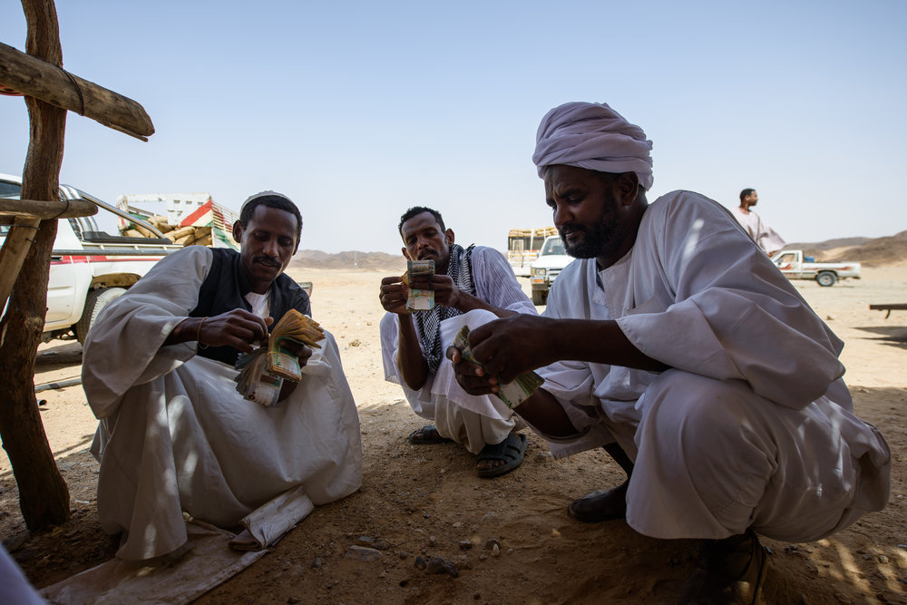 Sudanese men of the Sahara desert counting the money from selling faba beans (fuul), the national staple of Sudan