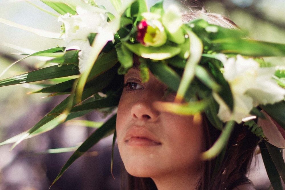 bigislandflowercrownsandhakuleis.jpg