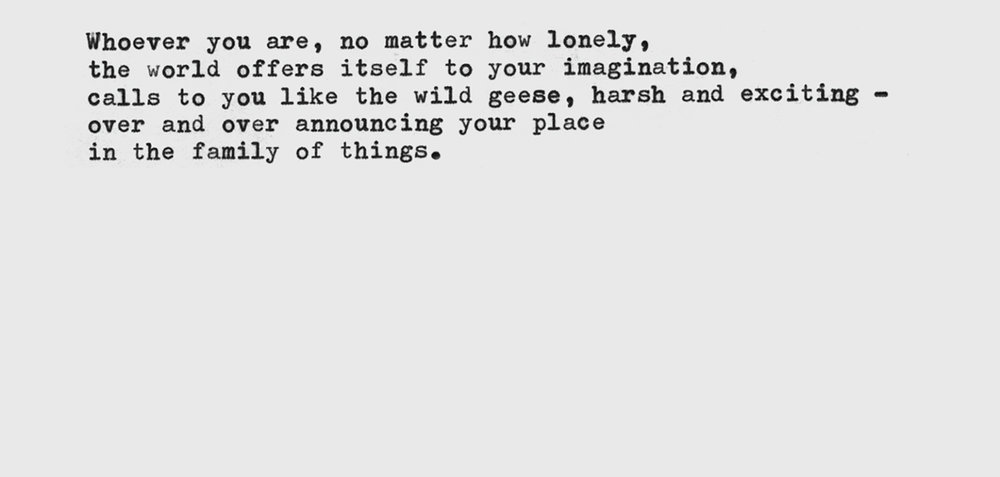 From  Wild Geese  by  Mary Oliver  (1993).