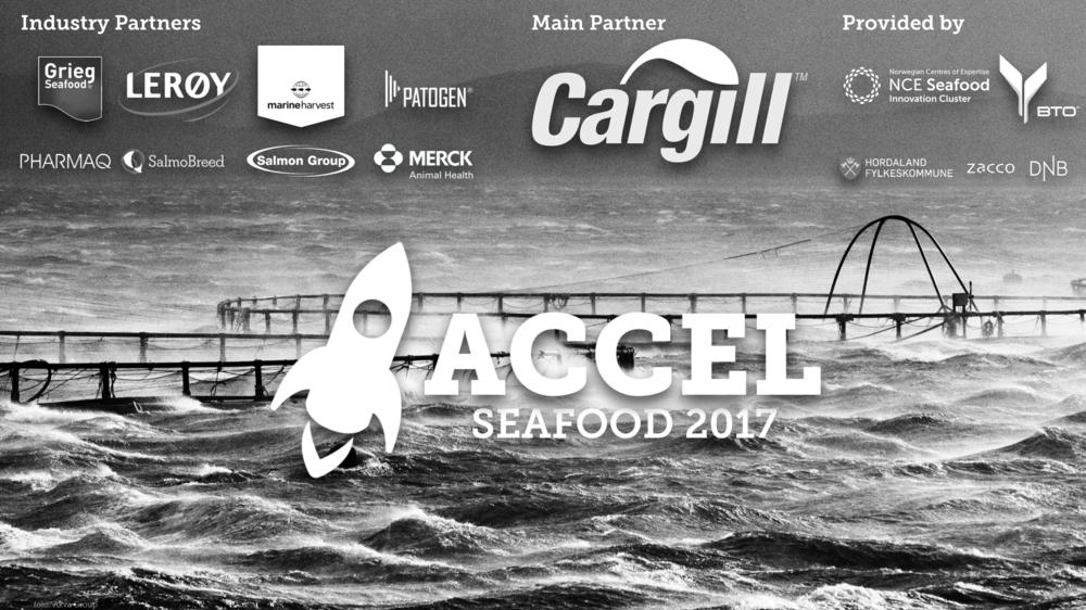 ACCEL Seafood 2017 ACCEL Seafood er et 12 ukers intensivt program for deg som vil starte eller har startet et innovativt selskap innen havbruks- og sjømatindustrien. Få mer informasjon →