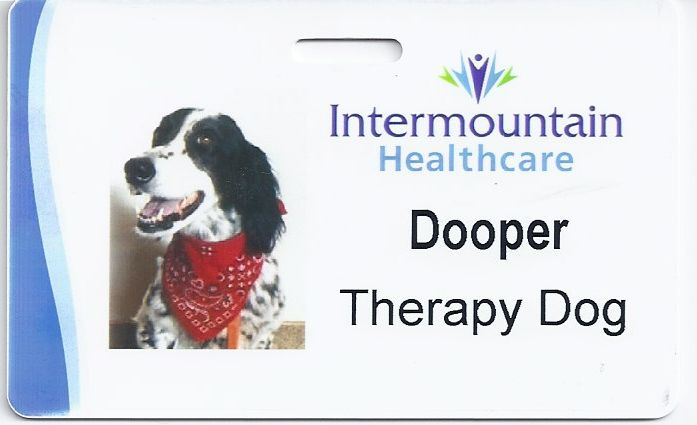 Doopers-TD-badge.jpg