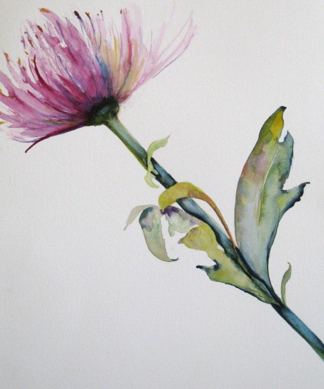 flowerfad.jpg