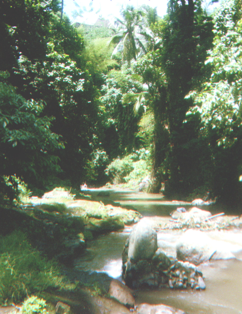 ubud_river.jpg