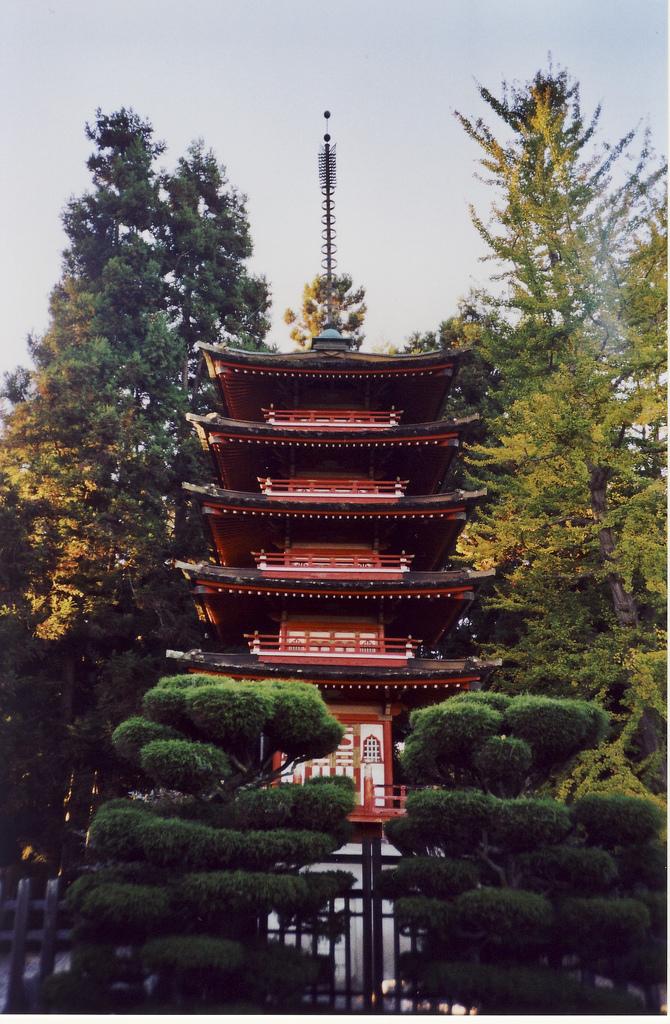 Japanese Tea Garden Pagoda Tokyo