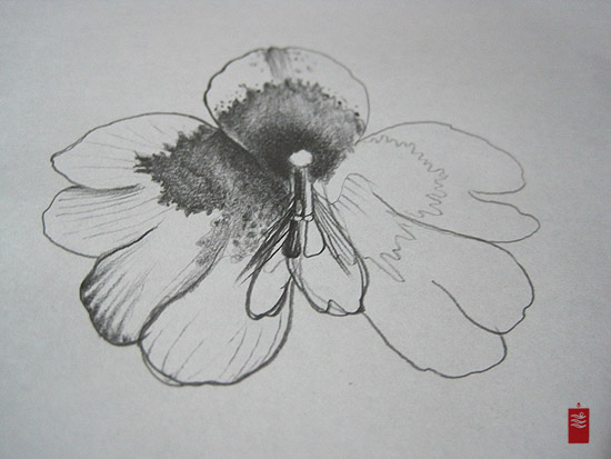 butterfly orchid tattoo