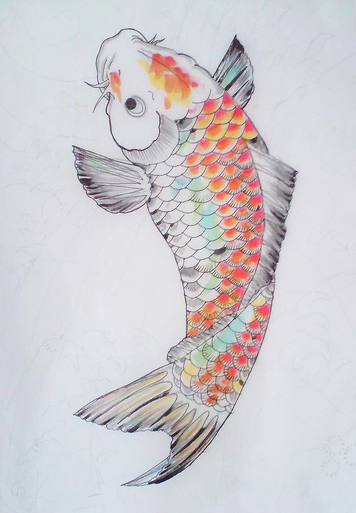 Koi Carp, Colour Study