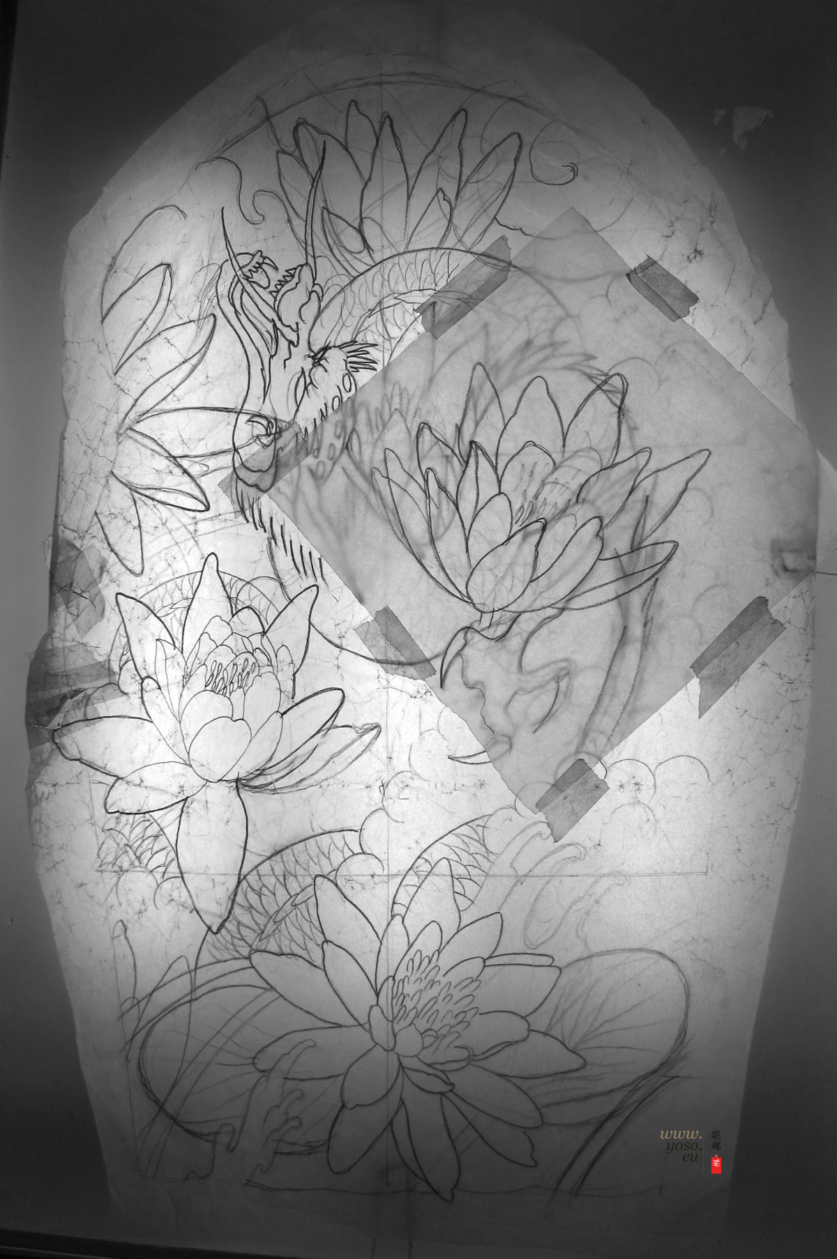 Dragon Lilies Study