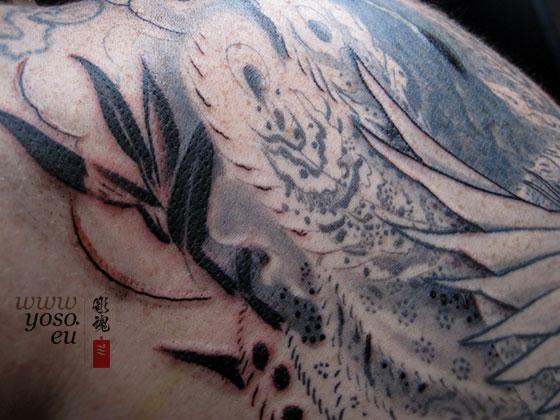 phoenix_bamboo_tattoo.jpg