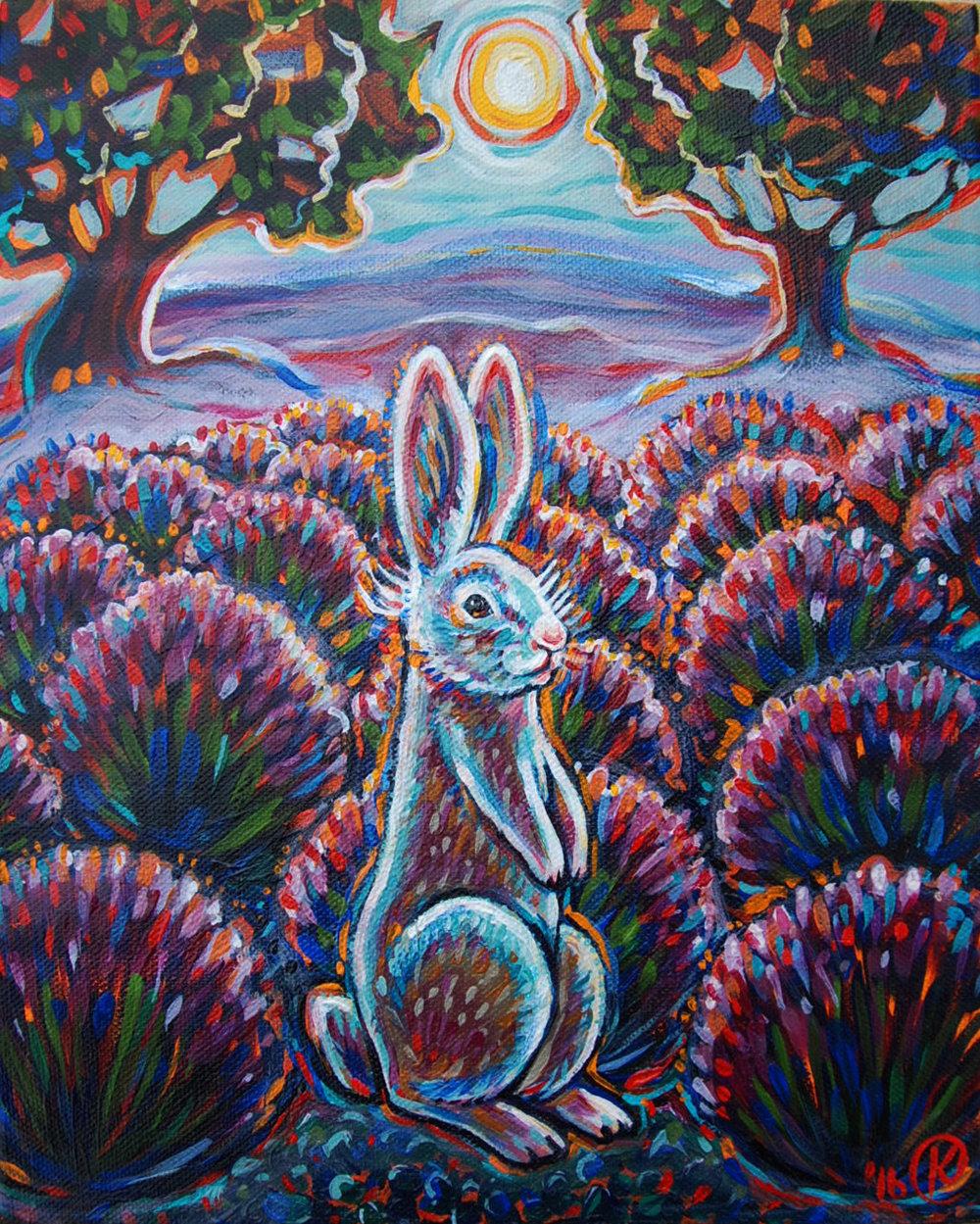 Lavender Bun 2016. Sold