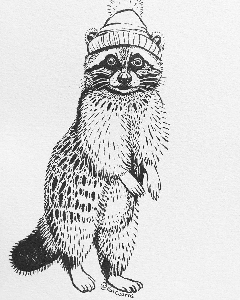 Rad Raccoon