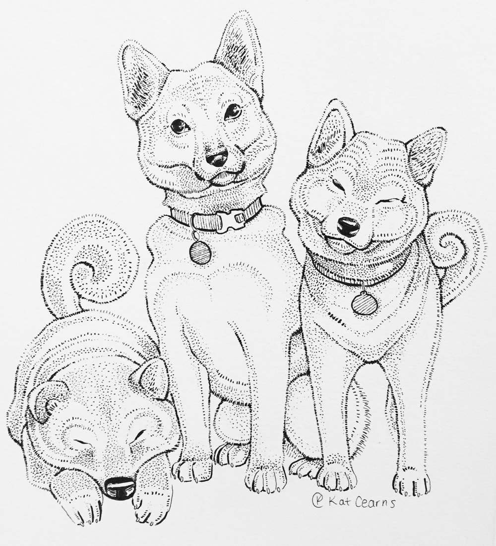 Three Shibas