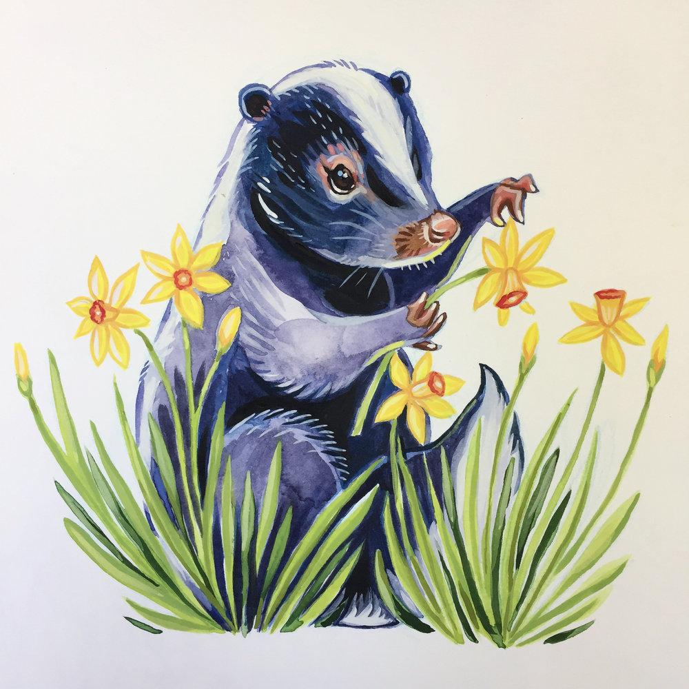 Daffodil Skunk