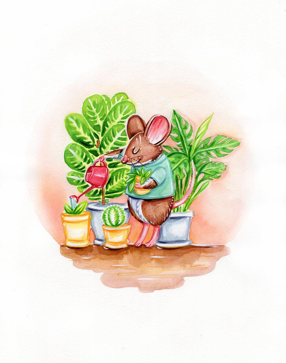 House Plant Mouse