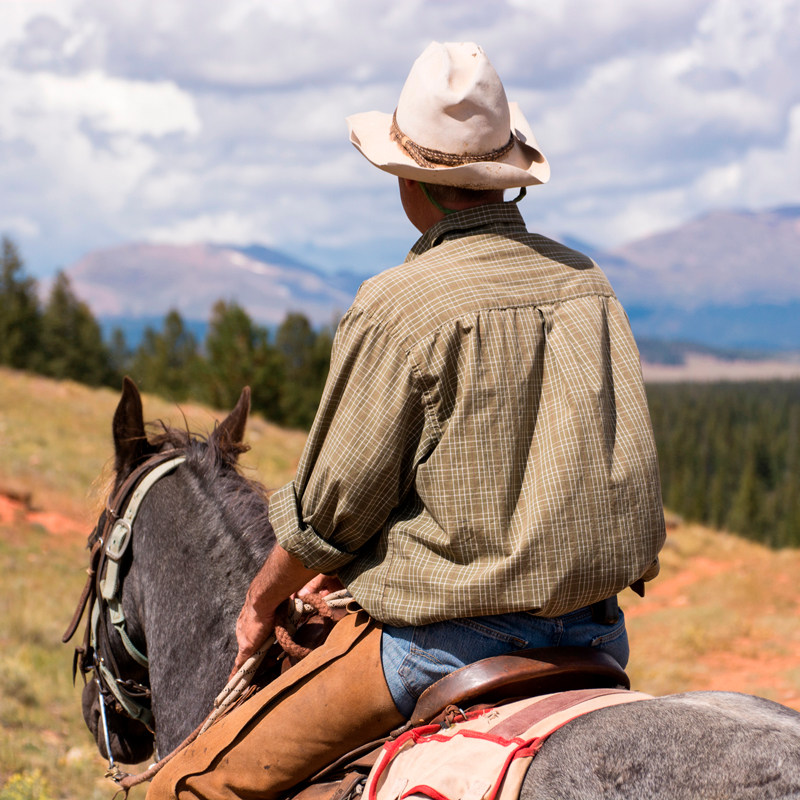 PLATTE RANCH RIDING STABLES - Fairplay719-836-1670More Info >