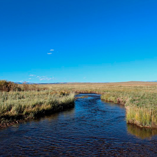 63 RANCH STATE WILDLIFE AREA - Western Park CountyHunting, fishing. More Info >