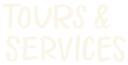 tours-services-type.png