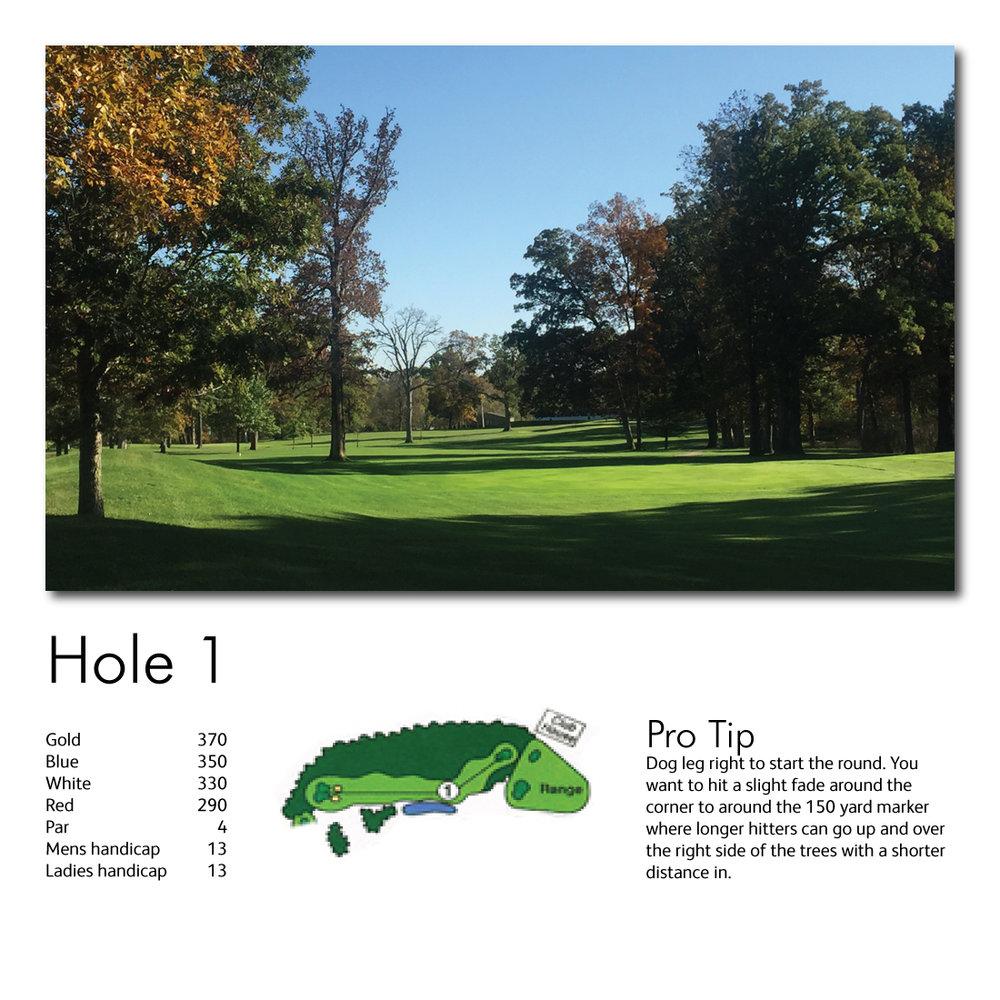Hole-1-web-image.jpg
