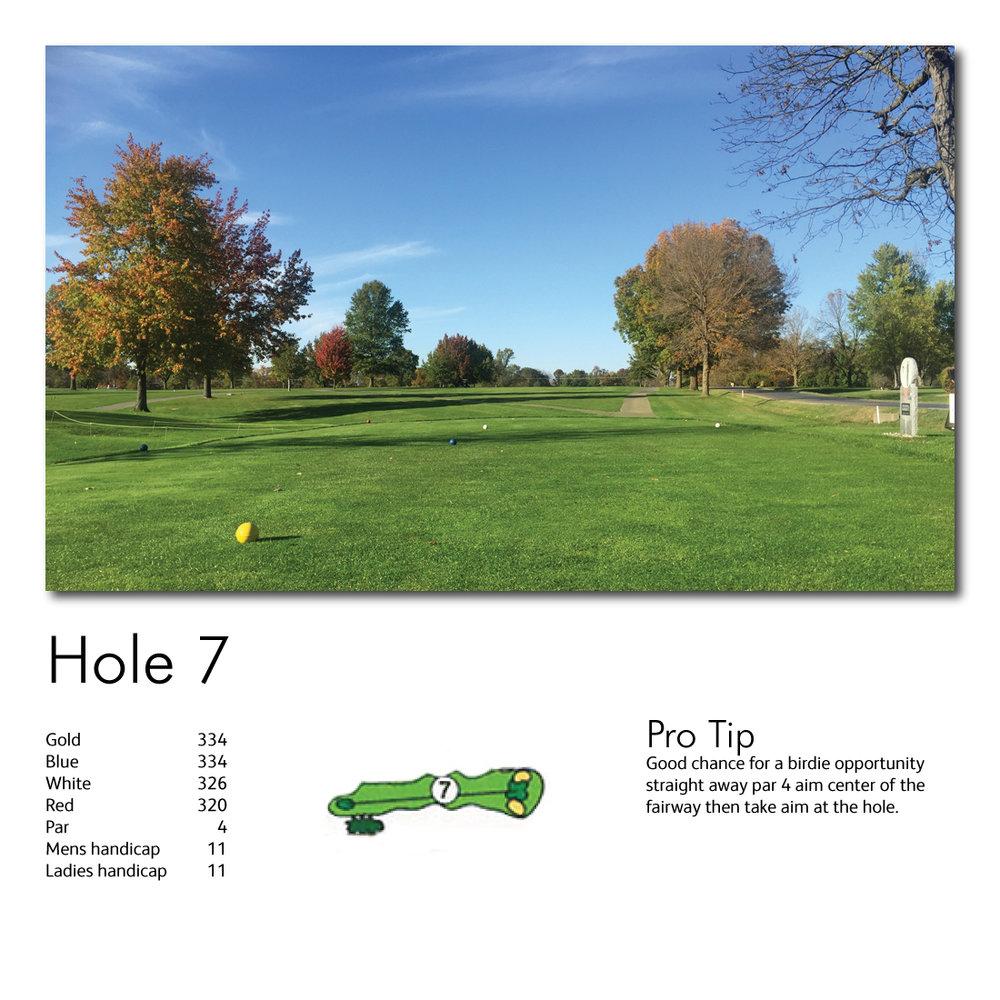 Hole-7-web-image.jpg