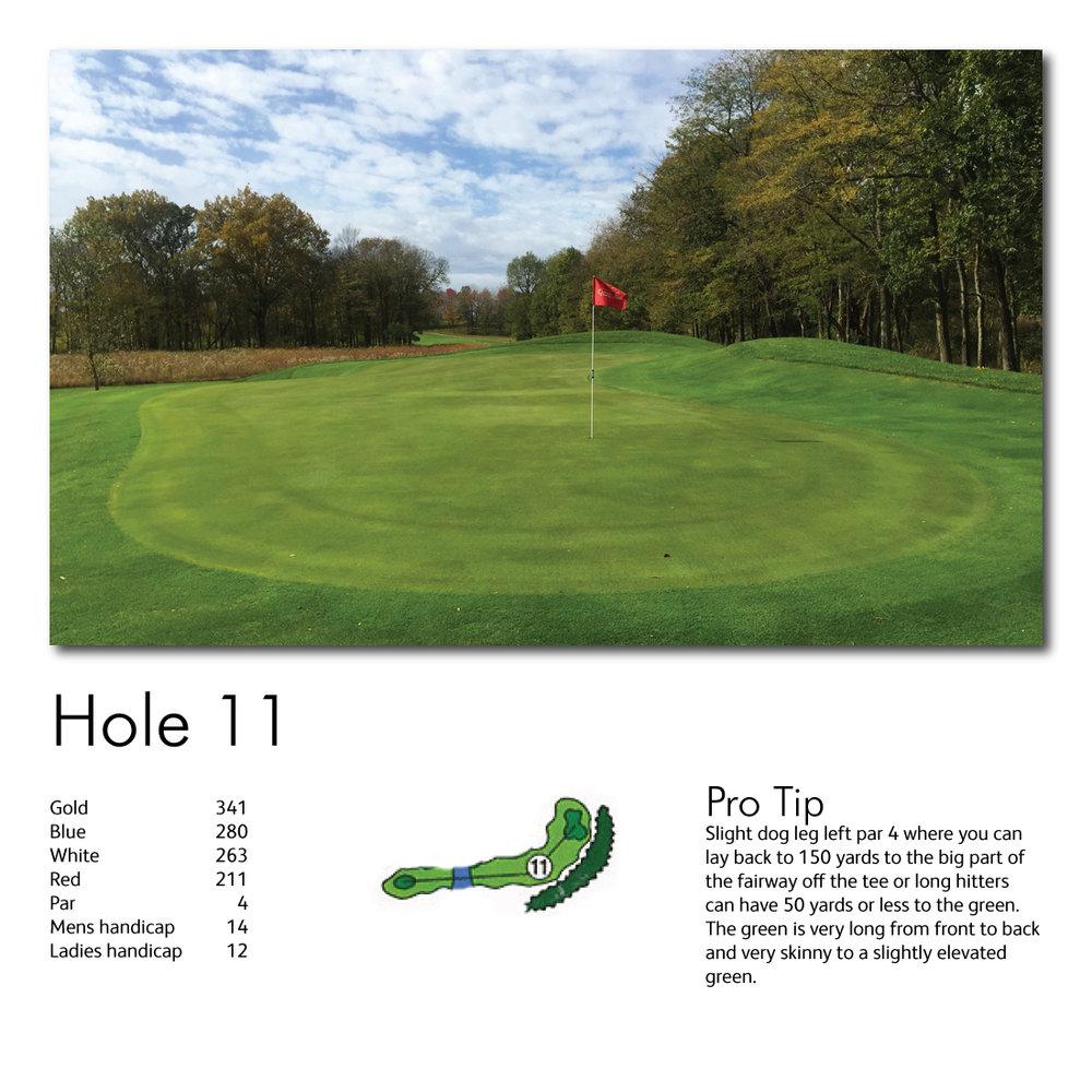 Hole-11-web-image.jpg