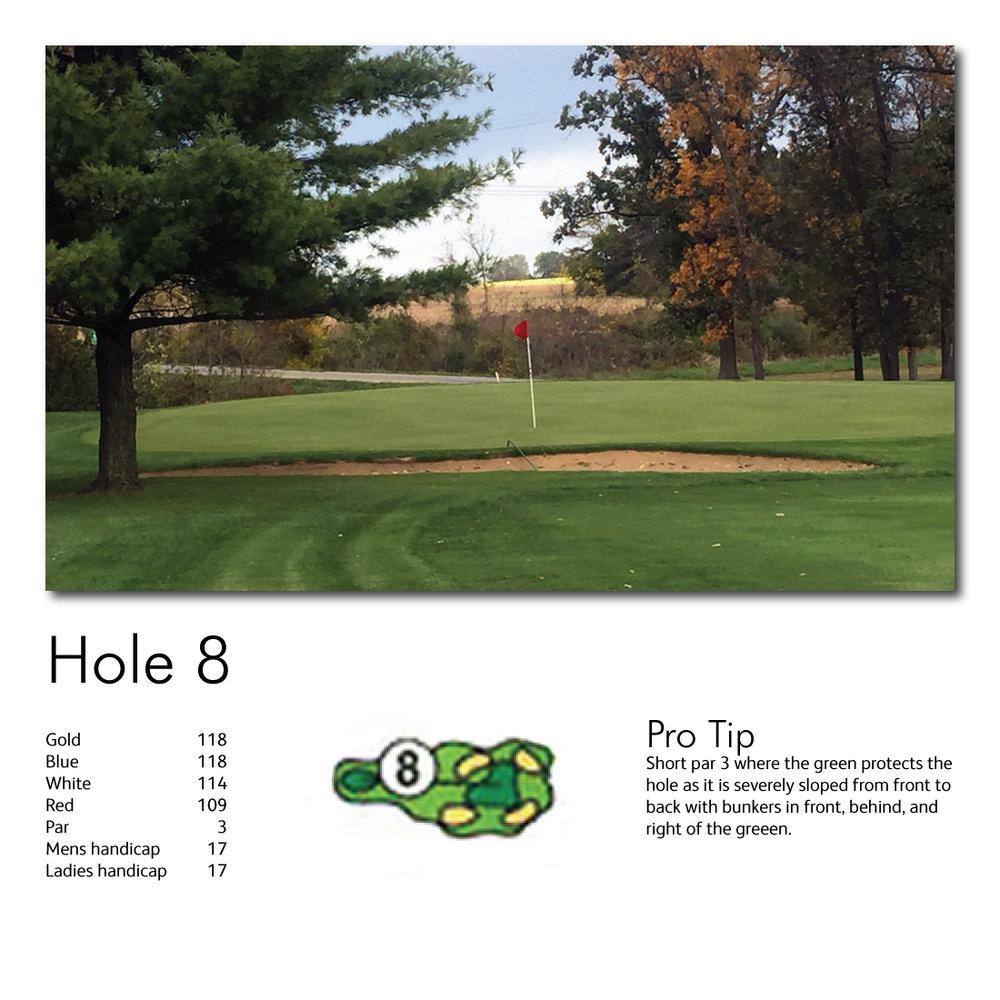 Hole-8-web-image.jpg