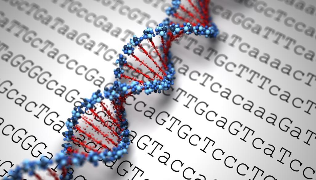 Resultado de imagem para genetic